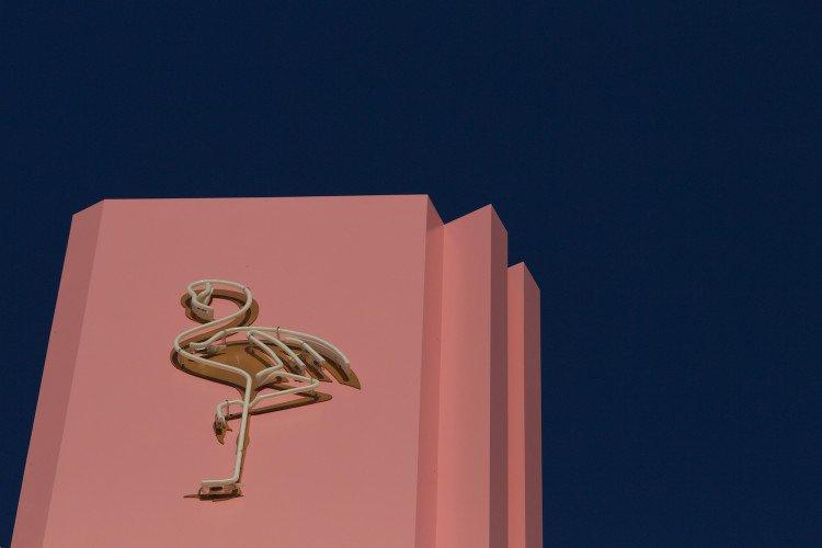 logo-paradiso-hotel-ibiza