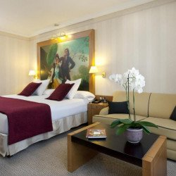 classic-coliving-princesa-plaza-madrid-hotel.